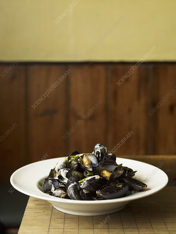 Steamed mussels on a white plate