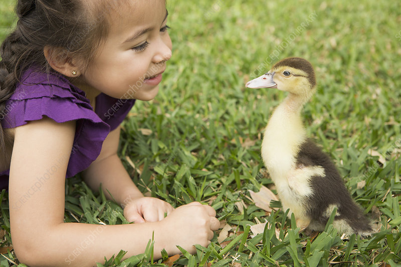 A young girl with a young duckling