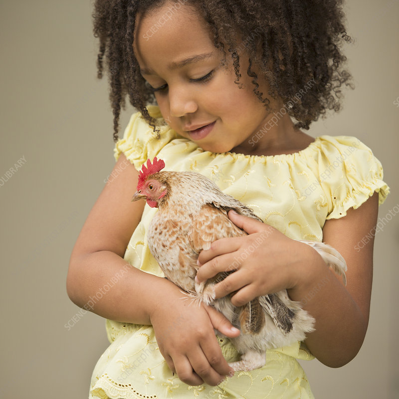 A young girl holding a chicken