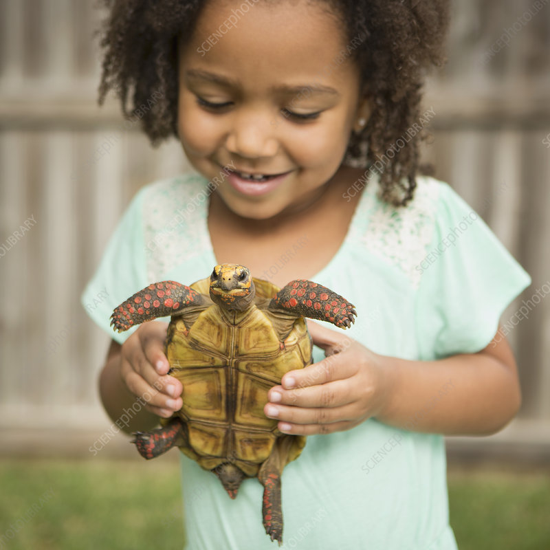A child holding a tortoise