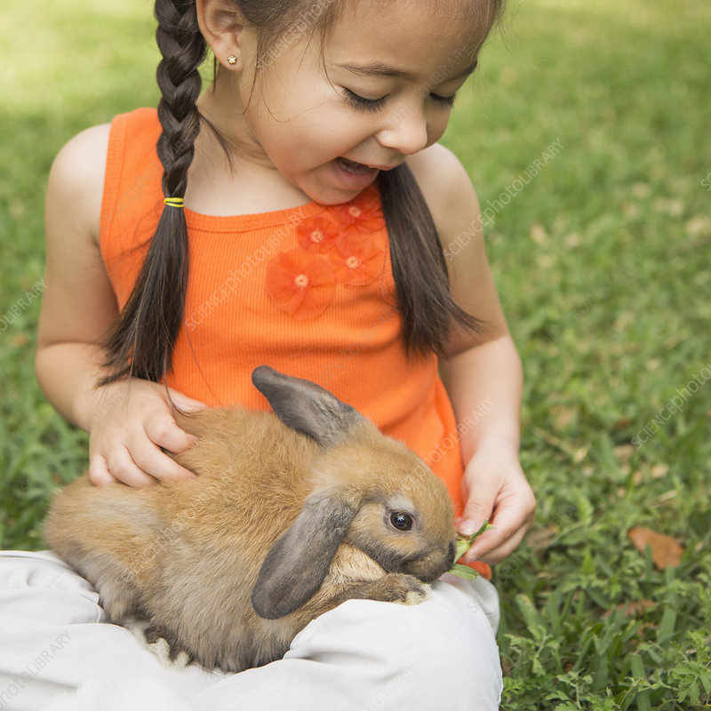 A child with a brown rabbit on her lap