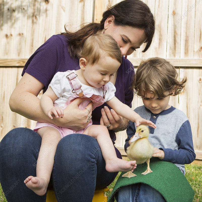 Family with a young duckling