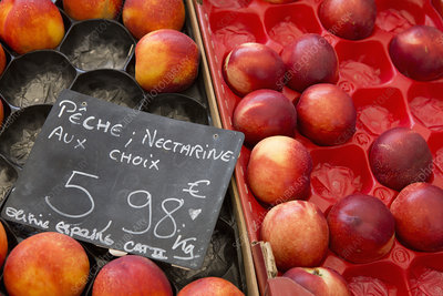Boxes of nectarines on a fruit stall