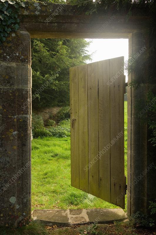 Open gate from walled garden