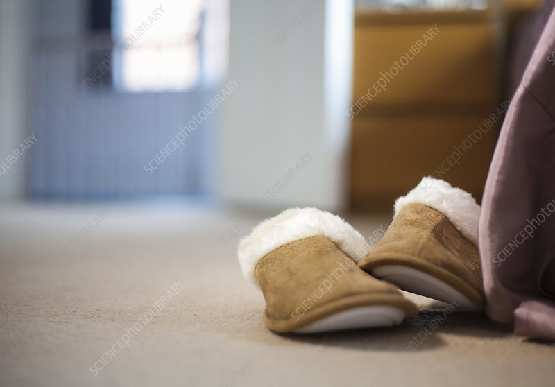 Pair of slippers on carpeted floor