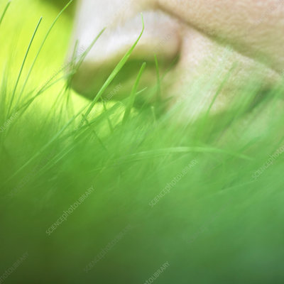 Person smelling grass, close up