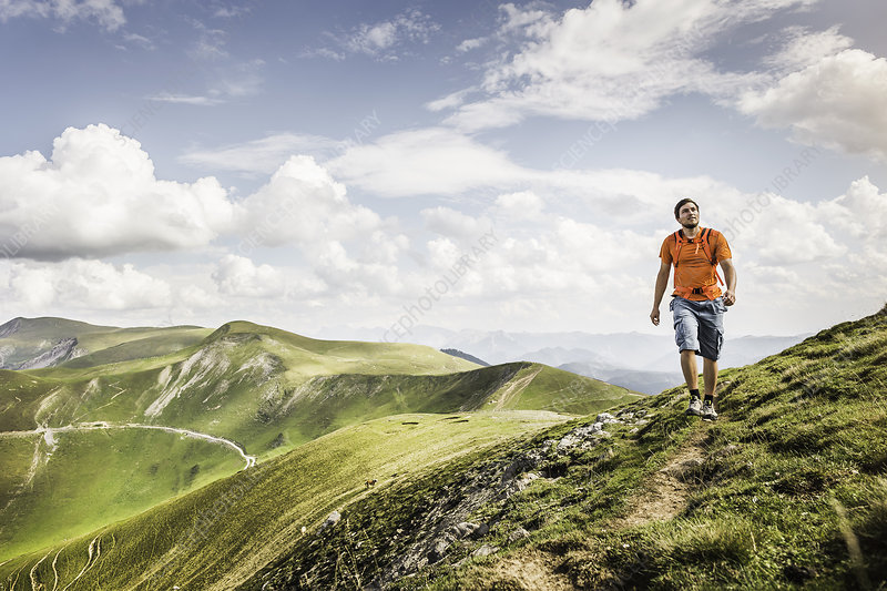 Man hiking on path, Pyrenees, France