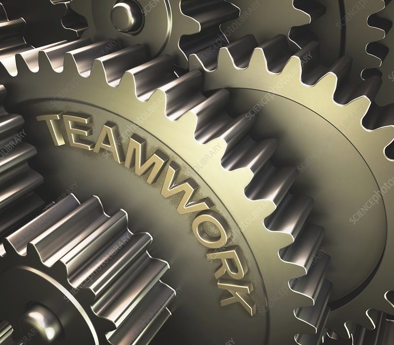 Gears with the word 'teamwork'