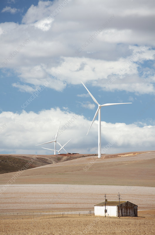Windfarm, Western Cape, South Africa