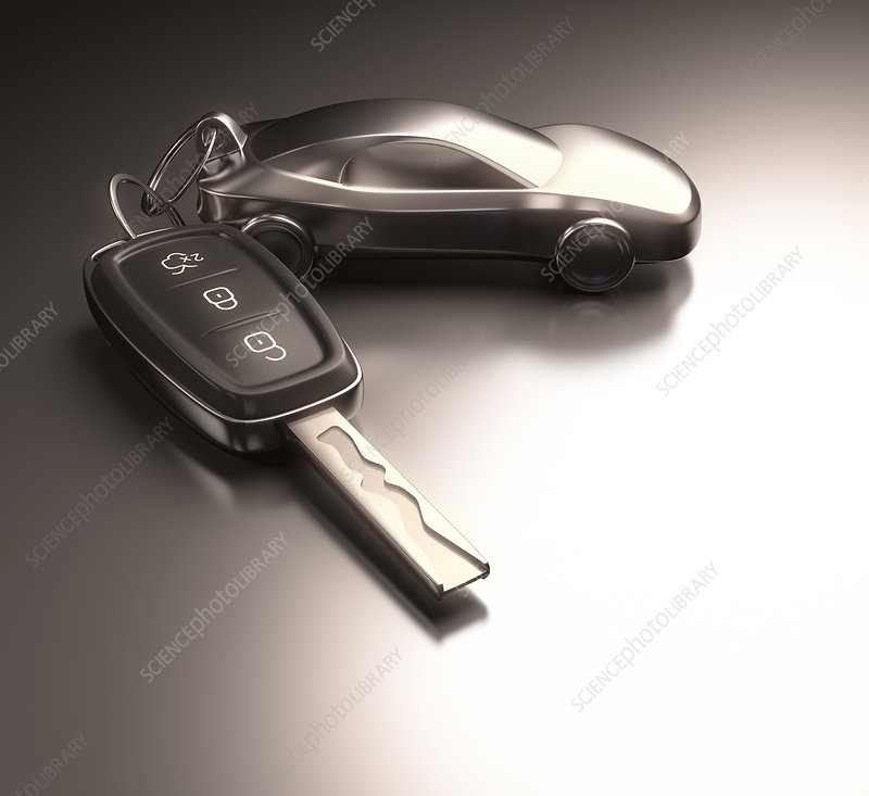 Car key and key ring