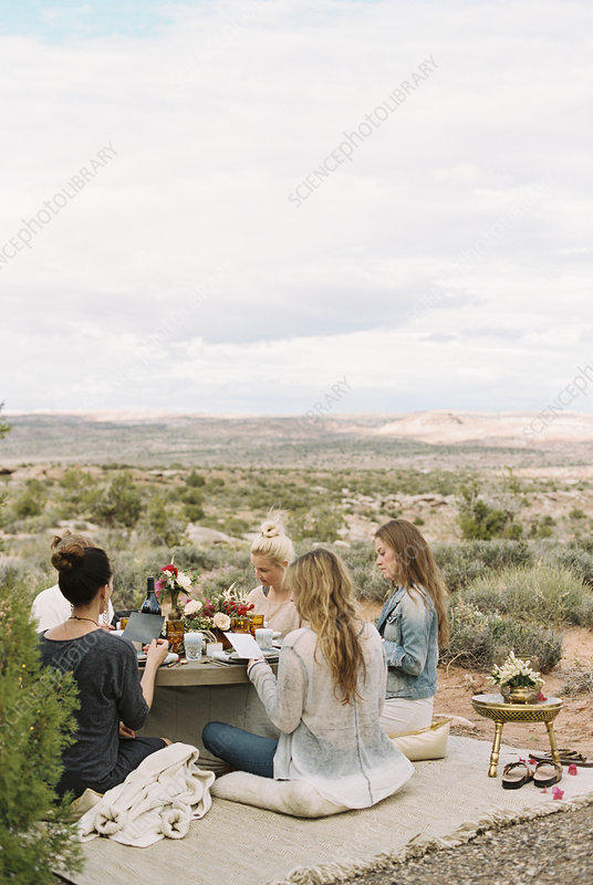 Friends, women at a meal or picnic