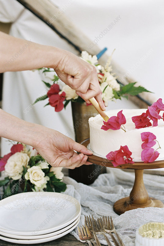 Woman cutting a cake with white icing