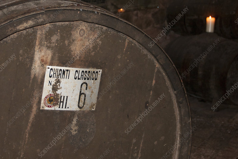 Oak barrel of Chianti wine, Tuscany