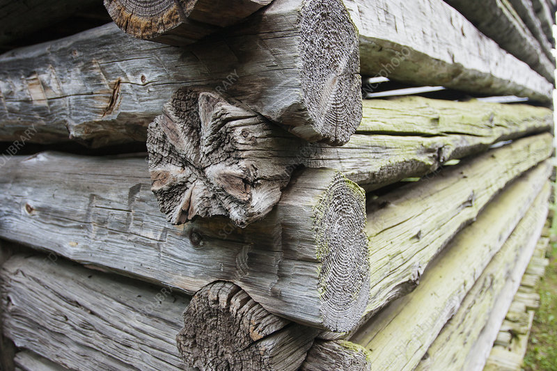 Log cabin with weathered wooden logs