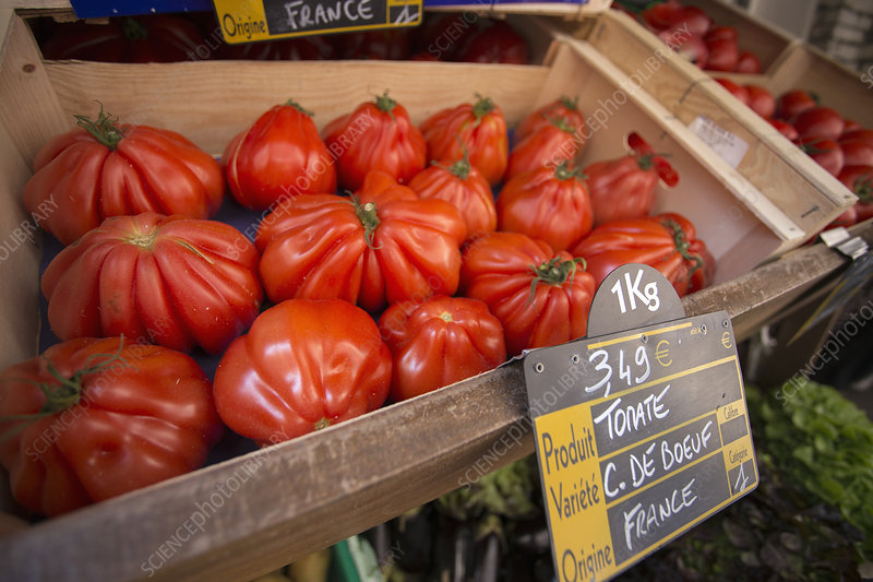 Large heirloom tomatoes at market