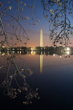 Washington Monument at dawn reflection
