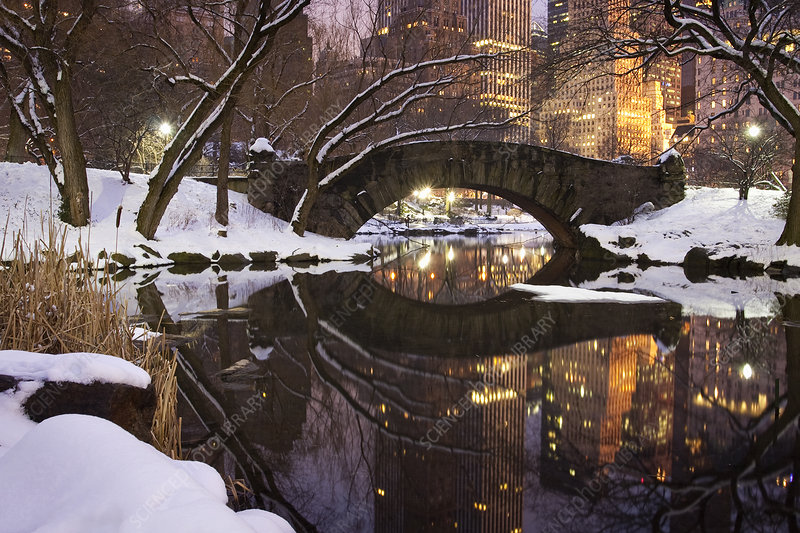 Central Park in Manhattan snow storm