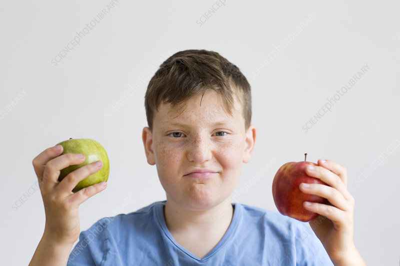 Boy holding red and green apple