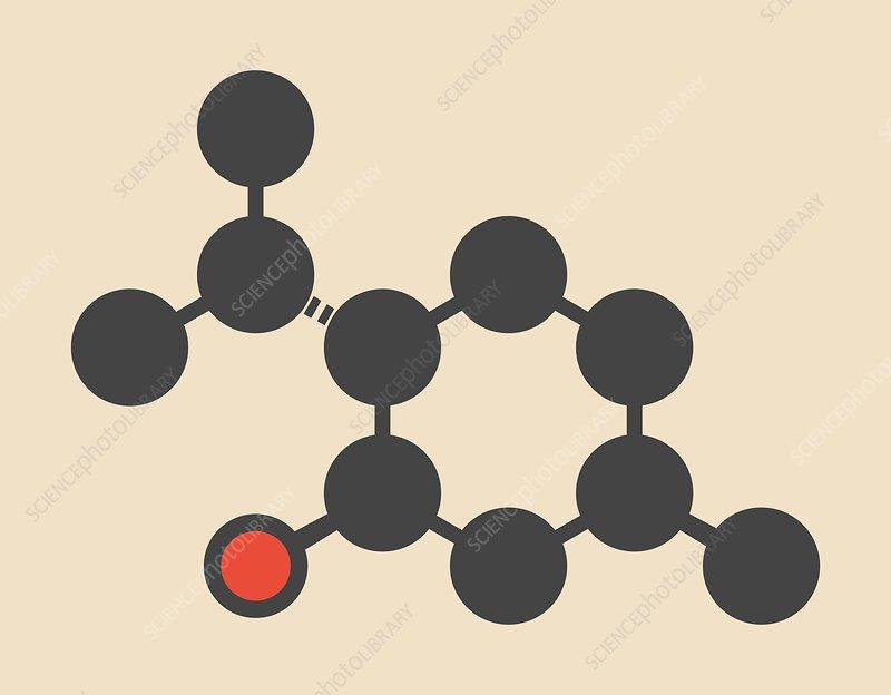Menthol molecule
