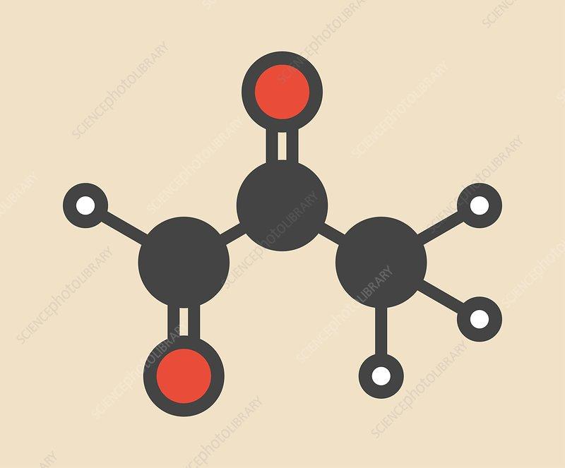 Methylene glycol molecule