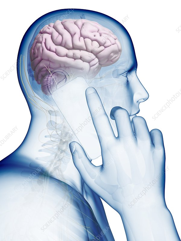 Cell phone and human brain, Illustration