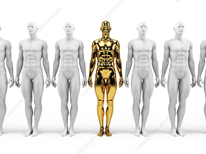 Gold and white human models, Illustration