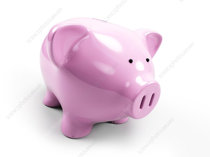 Pink piggy bank, Illustration