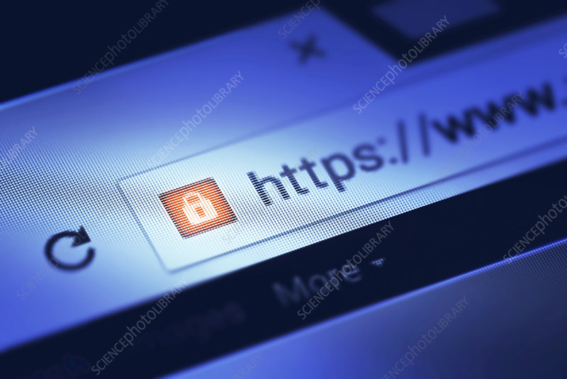 Https on internet search bar