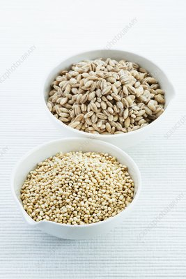 Pearl barley and Quinoa seeds
