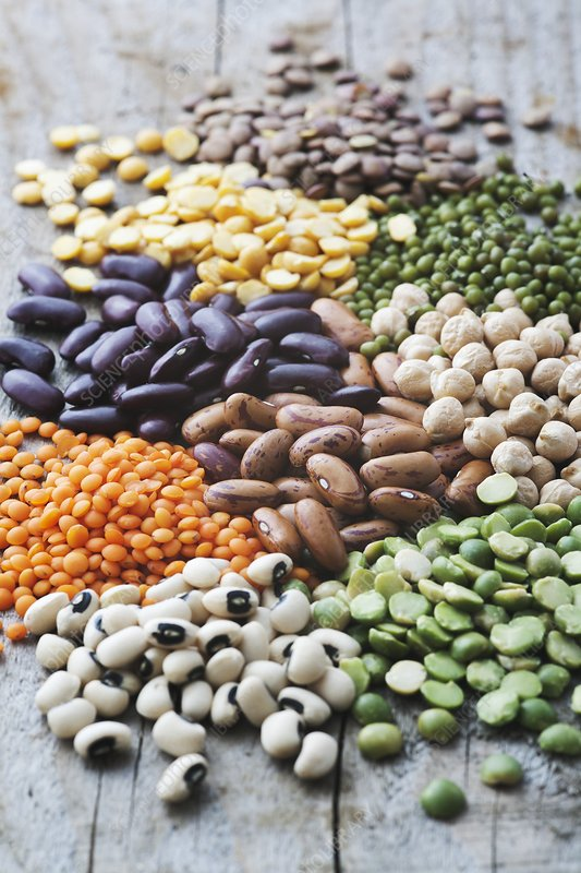 Selection of beans, lentils and peas