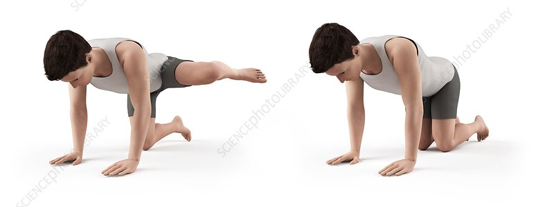 Person exercising, illustration