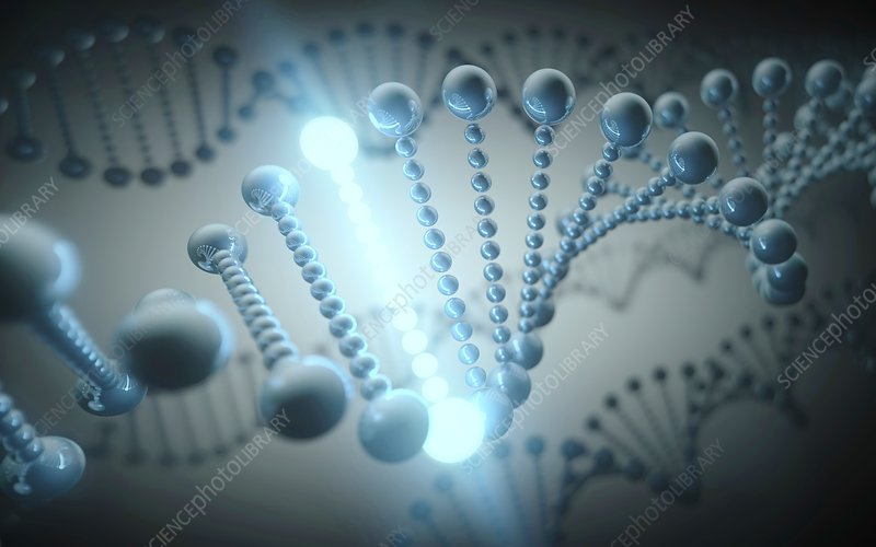 Dna helix, illustration