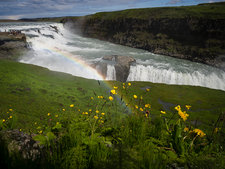 Gullfoss with rainbow and flowers