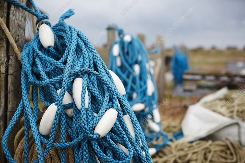 tangle of blue fisherman's rope