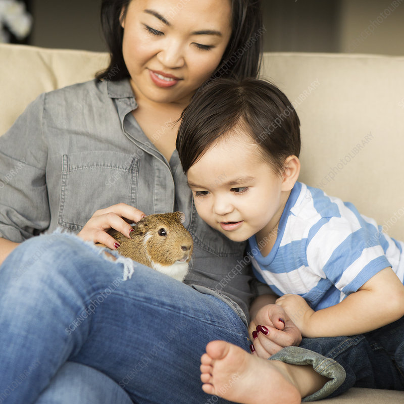 Mother and son petting guinea pig
