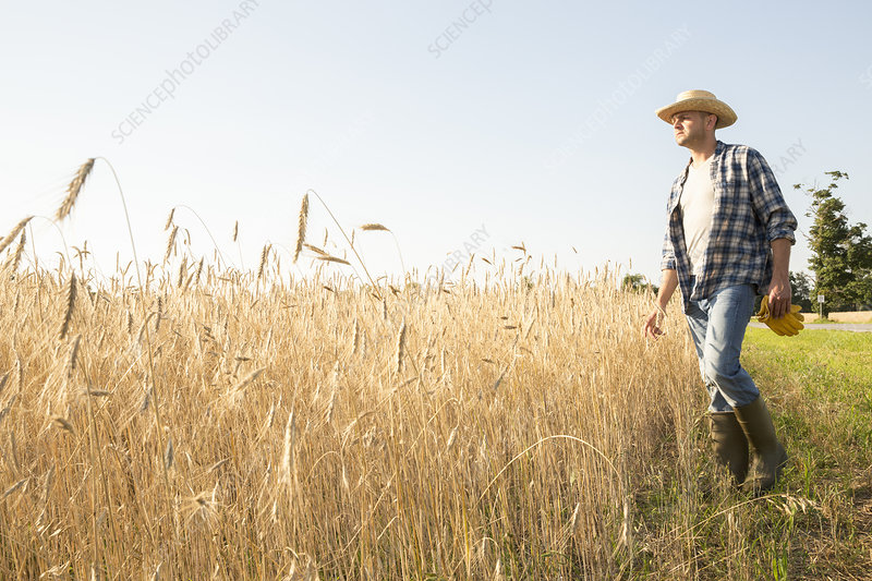 Man wearing a straw hat in field
