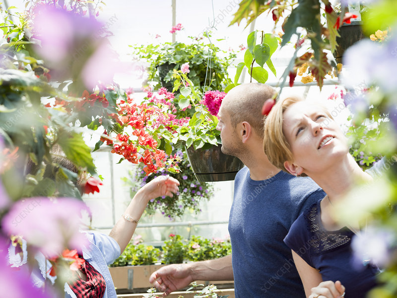 Couple looking at colourful flowers