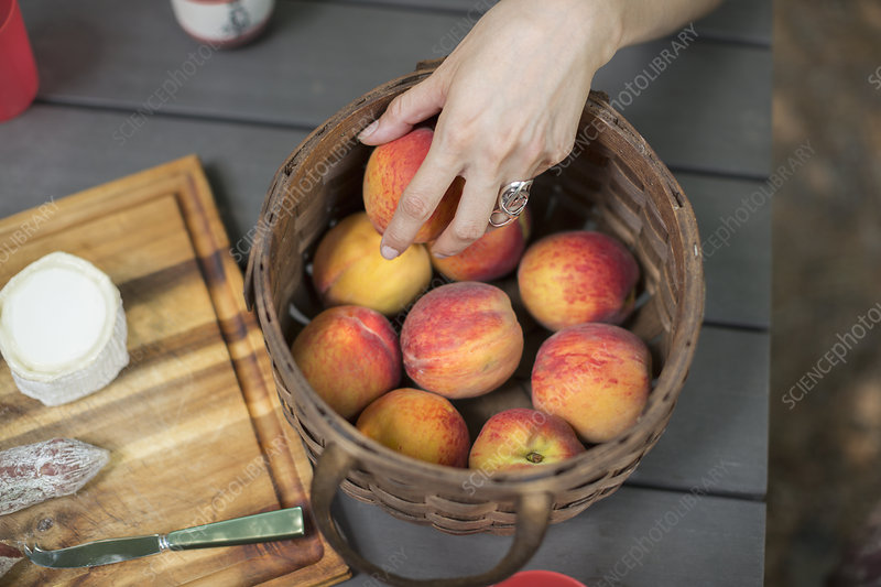 Picnic table with a basket of peaches