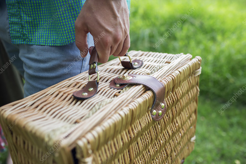A man's hand carrying picnic basket
