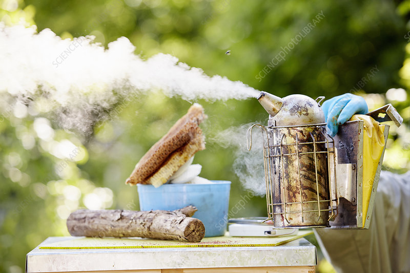 A beekeeper holding a metal smoke