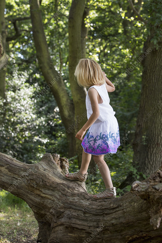 Young girl balancing on a tree in forest