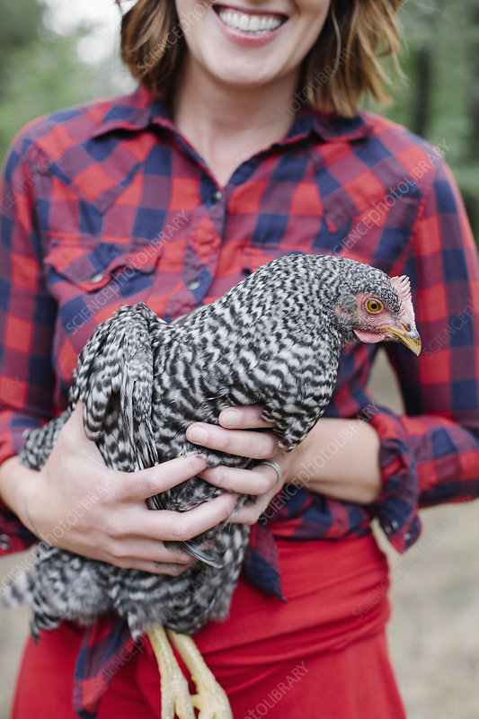 Smiling woman holding a grey specked hen
