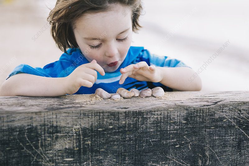 A boy at the beach counting shells