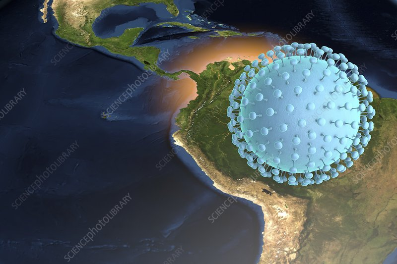 Zika virus in Brazil, illustration