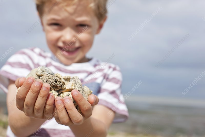 Boy collecting stones