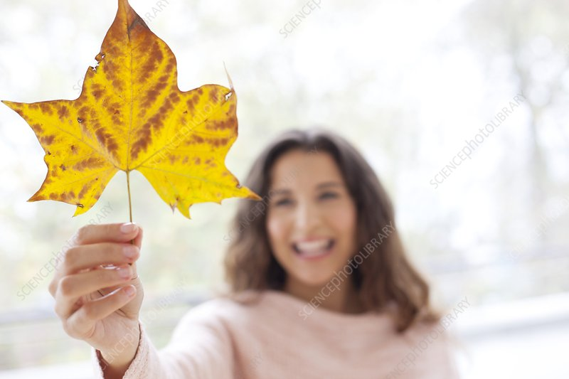 Woman holding an autumn leaf