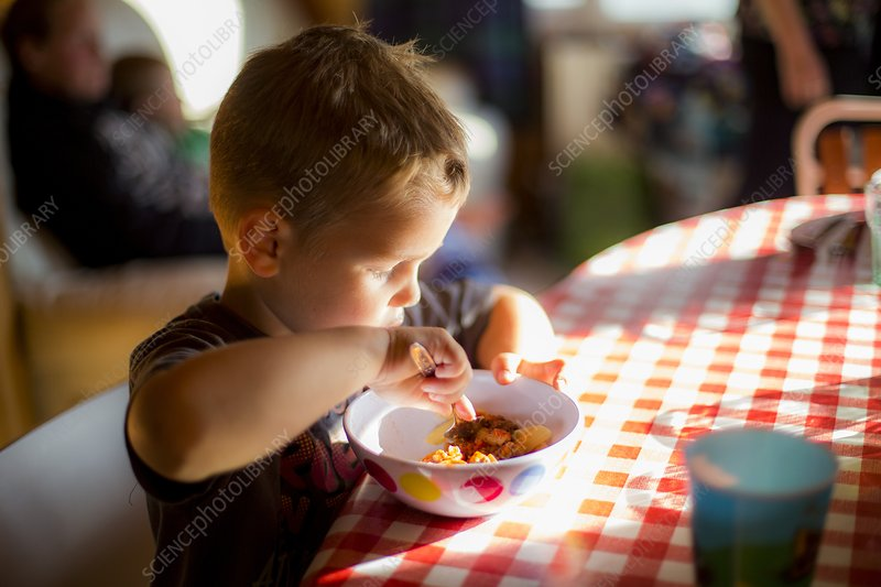 Boy sitting at table eating a meal