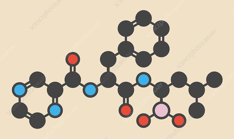Bortezomib cancer drug molecule