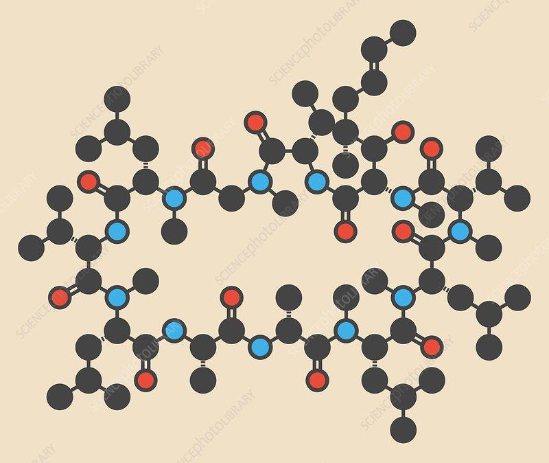 Ciclosporin or cyclosporine drug molecule