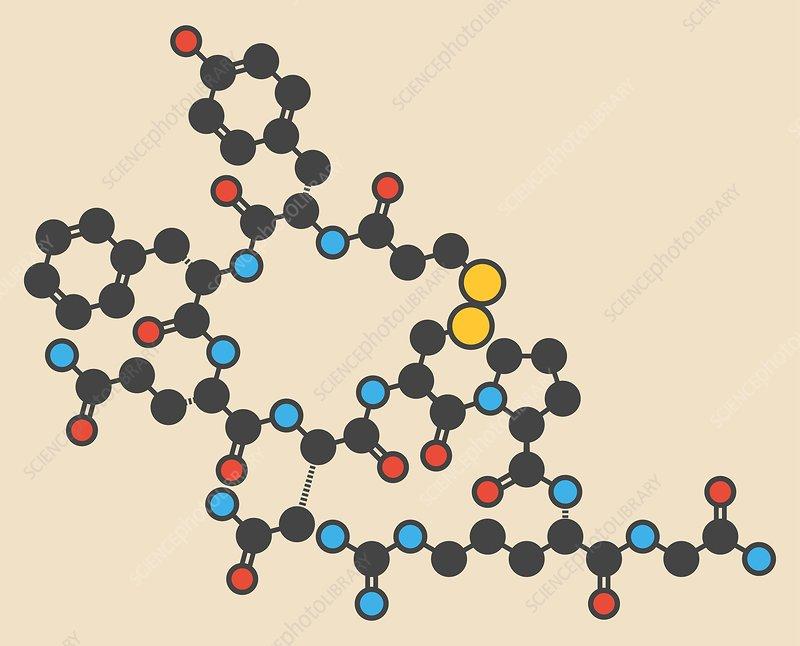 Desmopressin peptide molecule